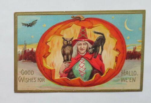 VTG Halloween Postcard Witch Inside a Pumpkin With Owl & Black Cat