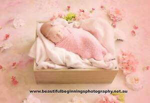 NEWBORN AND BABY PHOTOGRAPHY - $250 limited time offer Wynnum West Brisbane South East Preview