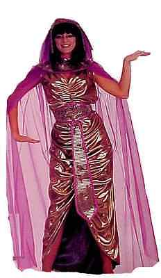 Cleopatra Gold Lame Deluxe Costume for Women or Teens Halloween Party