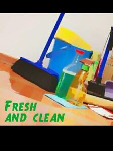 Fresh and clean company Labrador Gold Coast City Preview