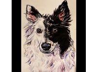 Pet portraits by Gemma