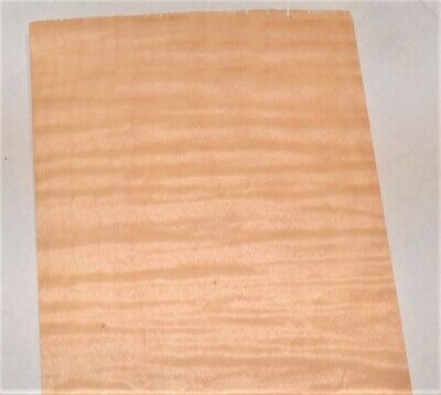 Curly Maple Raw Wood Veneer Sheets 6 X 33 Inches 142nd   8635-48