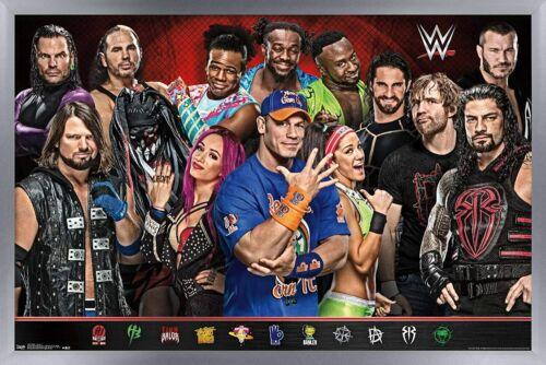 WWE Group 17 Wrestling Poster RP1605
