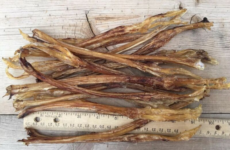 10 Authentic Deer Leg Tendon Sinew (Small)