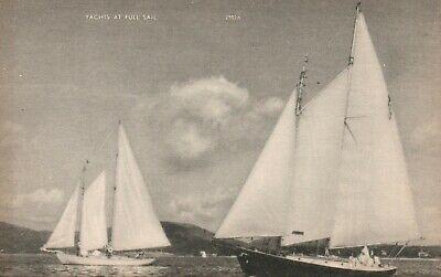 Yachts At Full Sail American Art Post Card Co. Postcard Unused