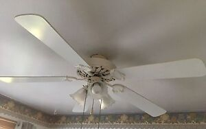 Two Ceiling fans 50$ for 2 or 30$ each.