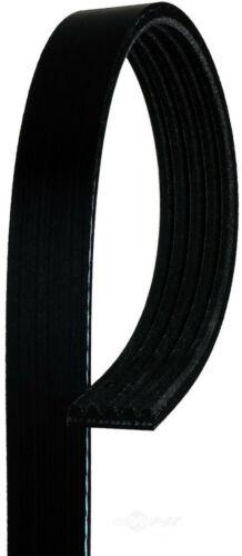 Serpentine Belt ACDelco Pro 5K404