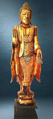Herrliche Buddha Statue aus Holz, goldfarben, stehend, 120cm hoch
