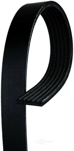ACDelco 12576453 Professional Serpentine Belt