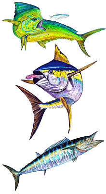 - Mahi Yellow Fin Tuna Wahoo Trio High Quality Printed Vinyl Decal for your truck