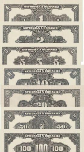 Dollar tip Banknotes Romania Lei reproduction