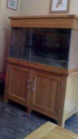 Large Aquarium in Solid oak cabinet