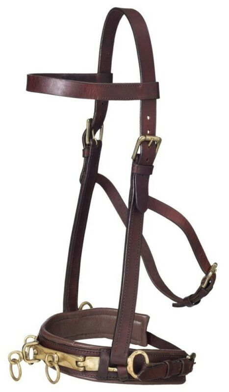 Lunging Leather Caveson with Brass Hardware