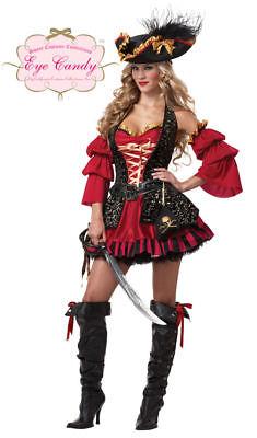 SPANISH PIRATE Adult Female Swashbuckler Sexy Dress Halloween Costume-M     - Female Pirate Garb