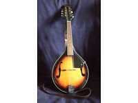 Stagg M20 Bluegrass Mandolin + bag (Polwarth)