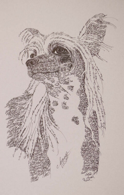 CHINESE CRESTED DOG ART PRINT #58 Stephen Kline will add dogs name free HOT GIFT