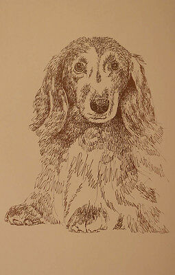 Longhaired Dachshund Dog Breed Art Print #33 Stephen Kline adds dogs name free.