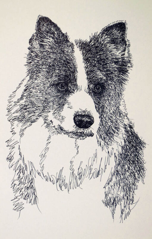 Border Collie Dog Art Portrait Word Drawing #46 Kline adds your dogs name free.
