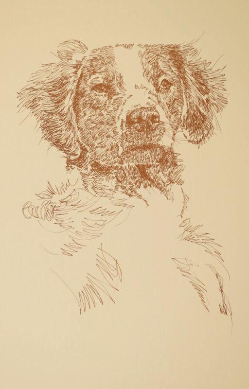 Brittany Spaniel Dog Art Portrait Print 64 Kline adds dog name free WORD DRAWING