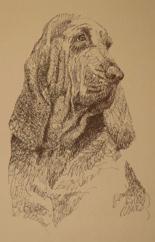 BLOODHOUND DOG ART Signed Kline Print #98 DRAWN FROM WORDS Your dogs name free.