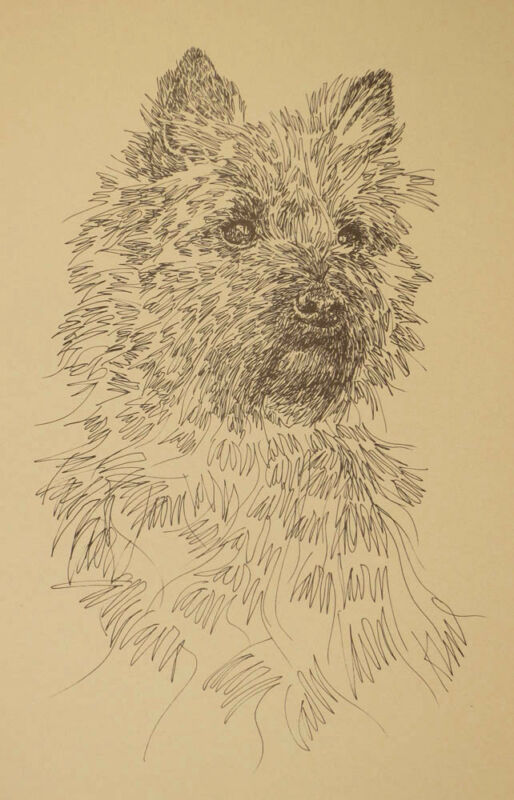 CAIRN TERRIER DOG ART LITHOGRAPH #46 Kline adds your dogs name free. BREED GIFT