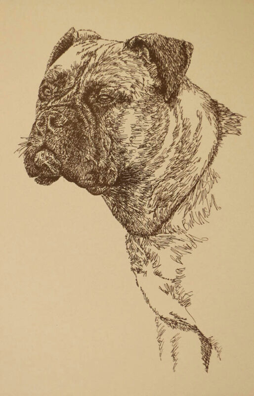 BULLMASTIFF DOG ART GIFT Stephen Kline will draw your dogs name free Print #22