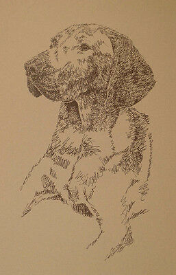 Vizsla Dog Art Print Lithograph #56 Stephen Kline adds your dogs name free. GIFT