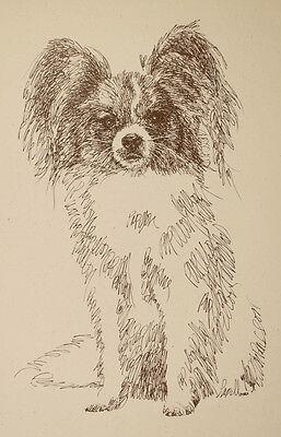 Papillon Dog Breed Art Portrait Print #34 Kline draws your dogs name free. GIFT