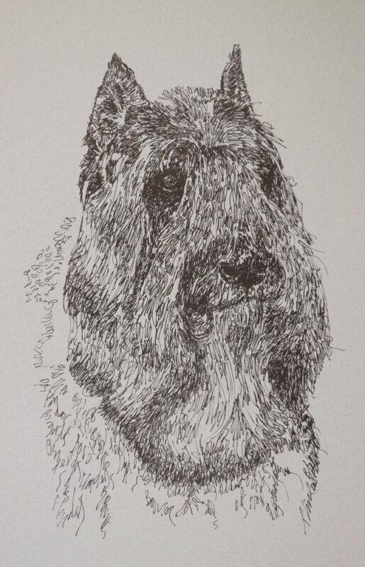 BOUVIER des FLANDRES DOG BREED ART PORTRAIT PRINT #93 Kline adds dog name free.