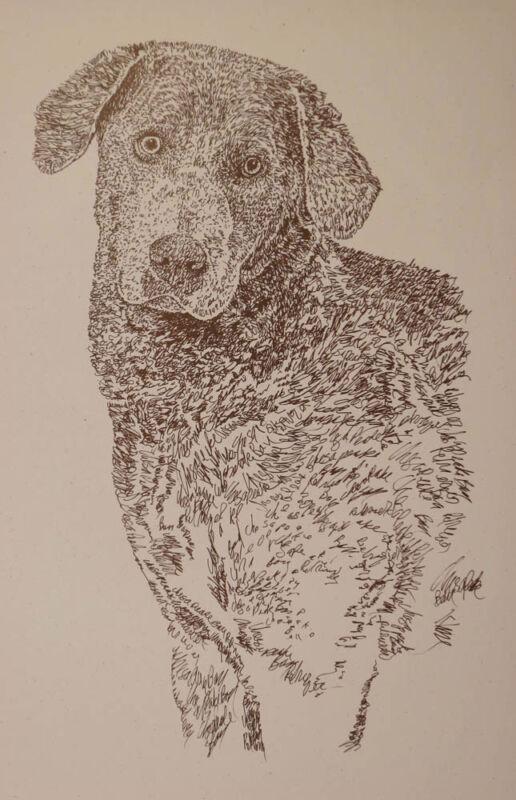 CHESAPEAKE BAY RETRIEVER DOG ART PRINT #28 Kline adds dogs name free.  CHESSIE