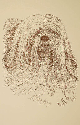 Lhasa Apso Dog Art Print #236 WORD DRAWING Kline will add your dogs name free.