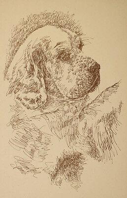 Clumber Spaniel Dog Art Print #236 Stephen Kline will draw your dogs name free.
