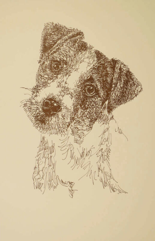 JACK RUSSELL TERRIER DOG ART PORTRAIT PRINT #77 Kline adds dogs name free ROUGH