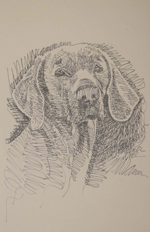 ORIGINAL WEIMARANER DOG ART Lithograph #42 Kline adds your dogs name free. GIFT