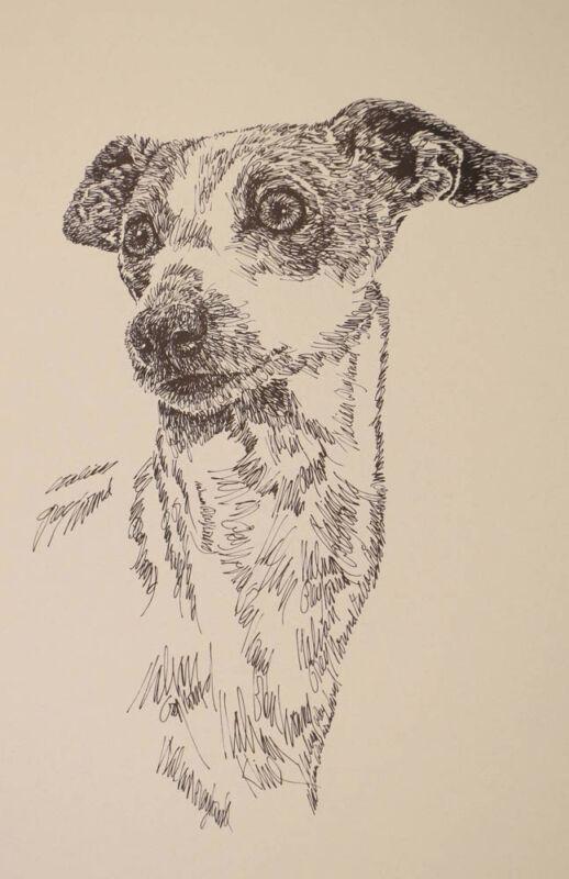 ITALIAN GREYHOUND DOG ART GIFT LITHOGRAPH #47 Stephen Kline draws dogs name free