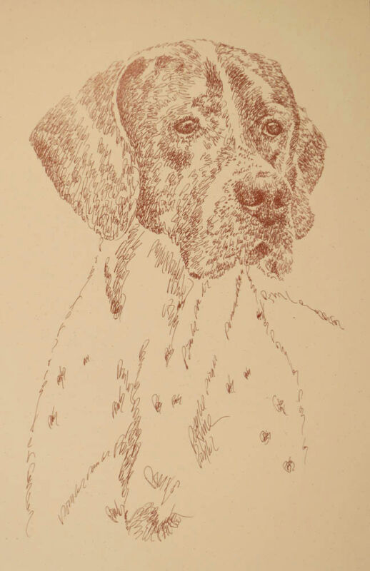 POINTER English DOG ART PRINT #41 LIVER Kline adds dogs name free WORD DRAWING