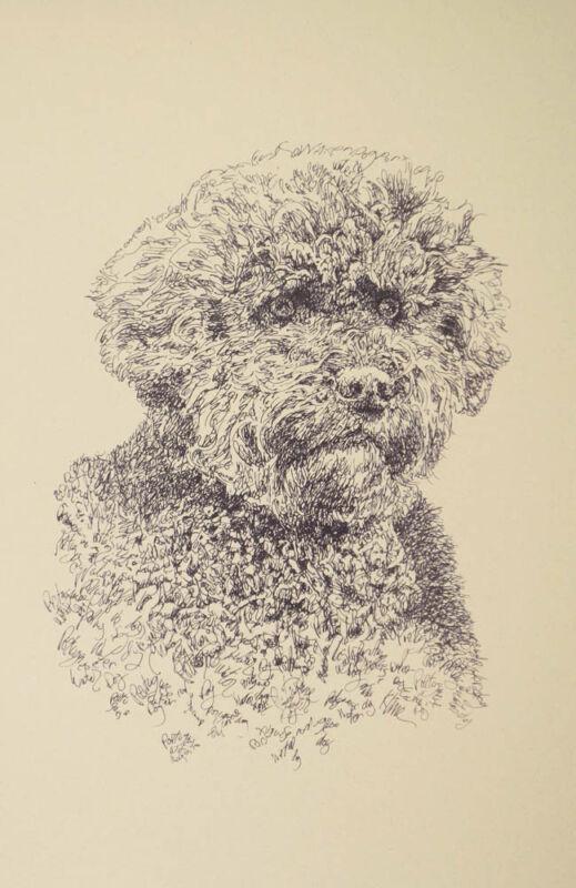 Portuguese Water Dog Art Portrait Print 61 Kline adds dog name free WORD DRAWING