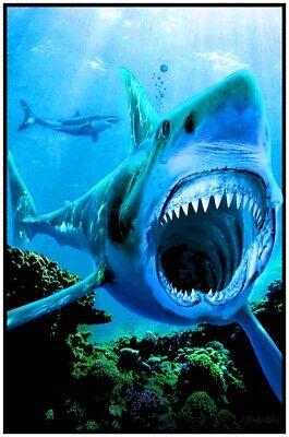 SHARK ATTACK - BLACKLIGHT POSTER - 23X35 FLOCKED 53964