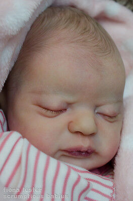 Fiona Lester   STUNNING REBORN BABY GIRL DOLL   AMERICUS   Laura Lee Eagles