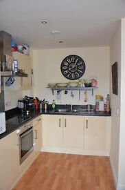 Large 1 bedroom 2 storey apartment with own garden area for rent!