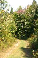 Grande terre à St-adolphe-d'howard