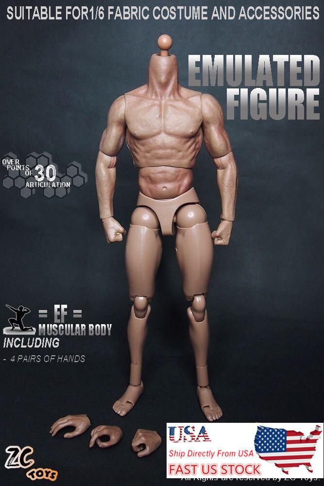 "ZC TOYS 12/"" Male Muscular Body Figure Doll NO Neck For 1//6 HT Man Head Sculpt"