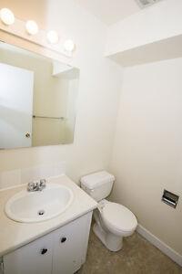 2 Bedroom –Southridge Apartments - Great Discounts! Edmonton Edmonton Area image 8