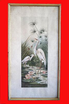 Aquarelle oiseaux. fin XIX ème, début XXème siècle. Flamand rose et palmiers.