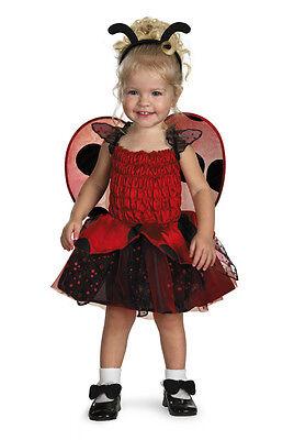 Ladybug Toddler Costume (Babybug Ladybug Toddler)
