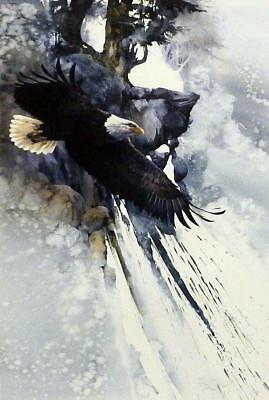 Morten Solberg To Touch the Sky S/N Eagle Art (Eagle Art Print)