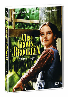 A Tree Grows in Brooklyn (1945) - Elia Kazan [DVD] FAST SHIPPING