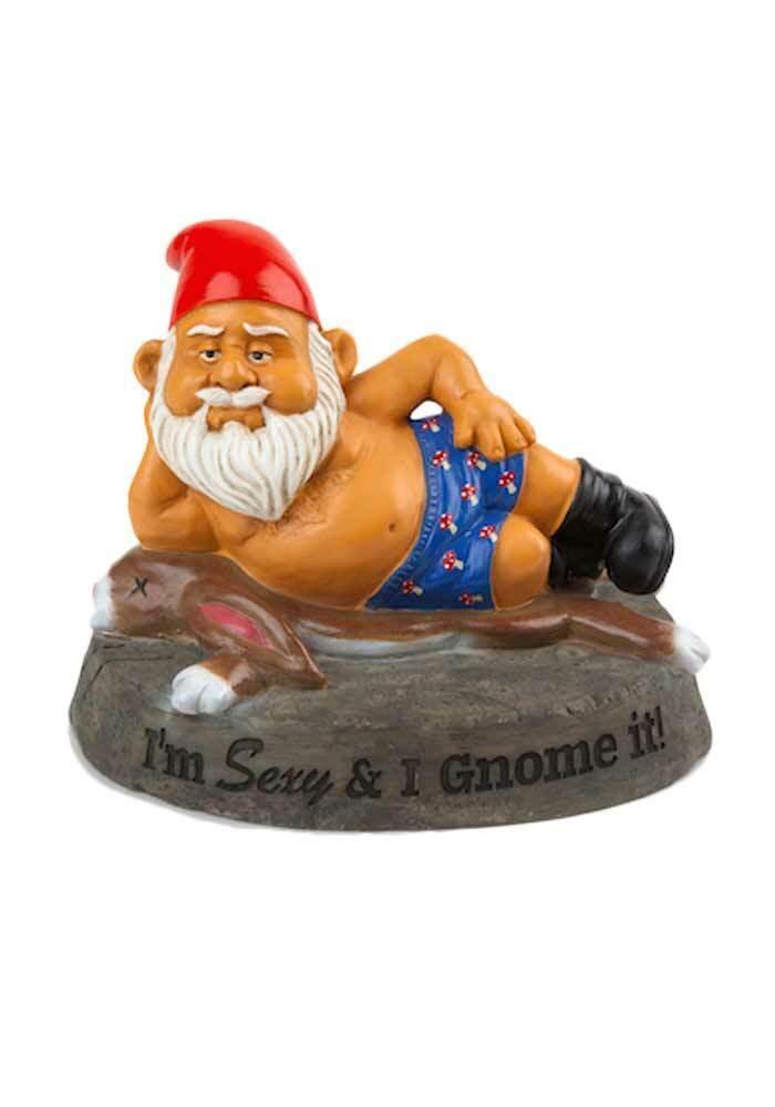 Gartenzwerg - I´m sexy and i gnome it -  lustig ausgefallen witzig Gnome
