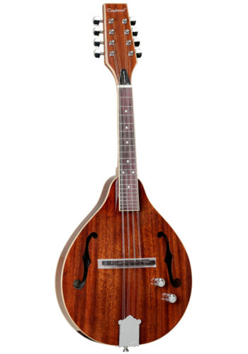 PERFECT,MINT,GREAT SOUND,SOLID TOP,MAHOGANY ELECTRO MANDOLIN,NORMAL PRICE £349