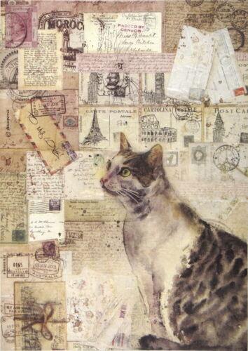 Rice Paper for Decoupage Scrapbook Craft Sheet Cat